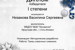 Низамова Василина Сергеевна (1)