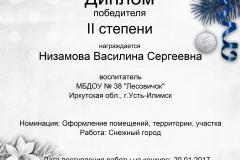 Низамова Василина Сергеевна
