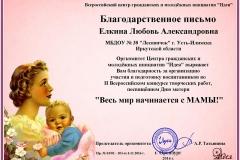 Благодарность Елкина Л.А.(1)